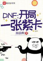 DNF:开局一张紫卡
